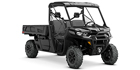 2020 Can-Am Defender PRO XT HD10